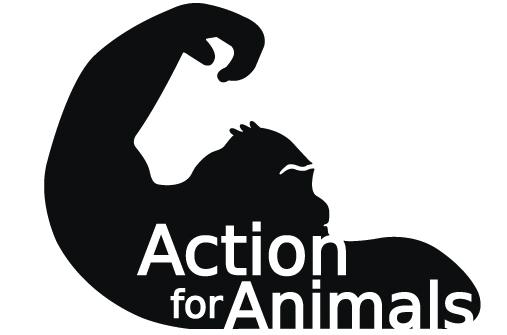190317 action logo