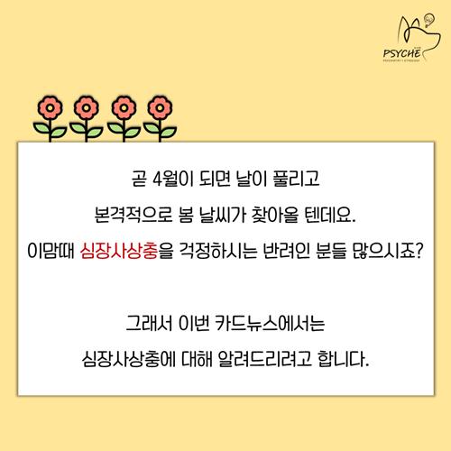 20190325card_heartworm2