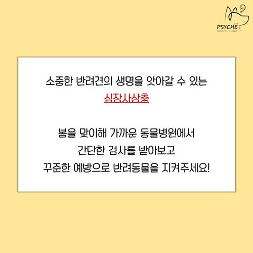 20190325card_heartworm8