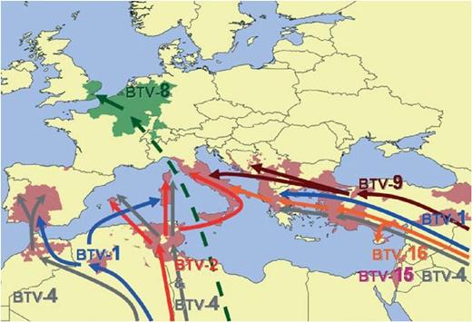 그림 17. 유럽에서 최근 기후변화의 공간적 변화와 블루텅 바이러스 전파양상(Purse et al., 2008)