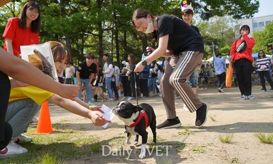 2019chungbuk festival1