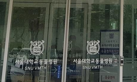 참고사진) 서울대학교 동물병원
