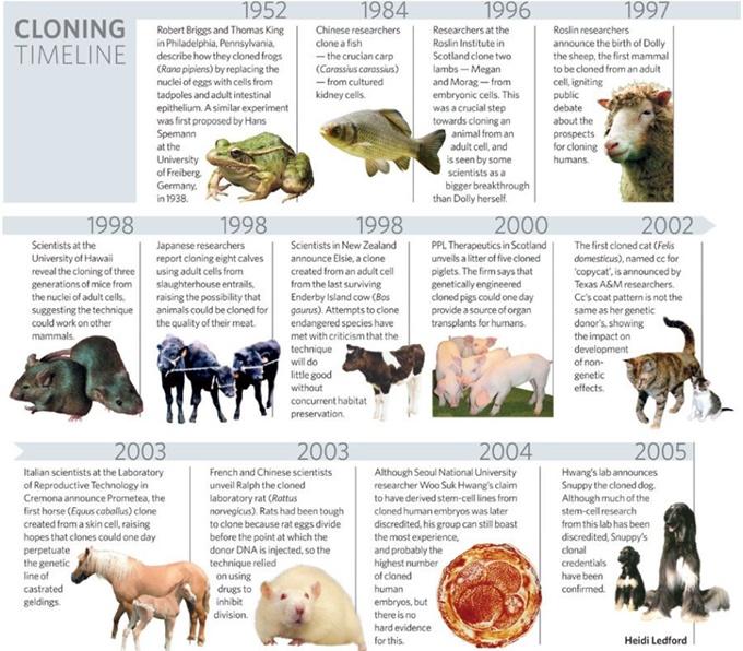 그림 2. 초기 주요 복제동물의 생산 시기 별 연대표(출처: Nature, 2007)