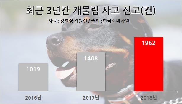 190728 dog