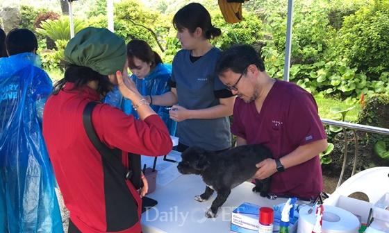 윤영민 제주대 교수(사진 우측)을 비롯한 봉사단이 동물 진료 봉사를 진행하고 있다.