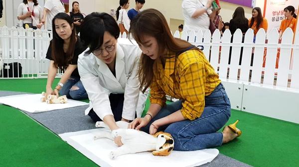 펫서울 2019 홍보대사 배우 안혜경 씨도 반려견 CPR 교육을 받았다.