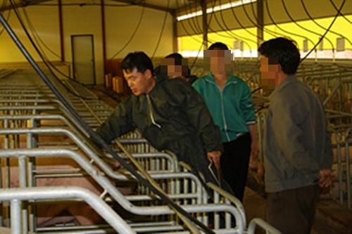 금강산 금천리 양돈장을 방문한 김준영 수의사(2007년)