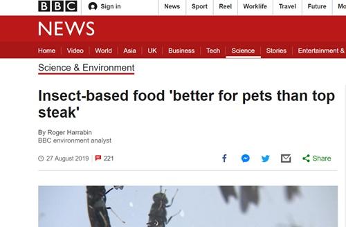 BBC 홈페이지 캡쳐