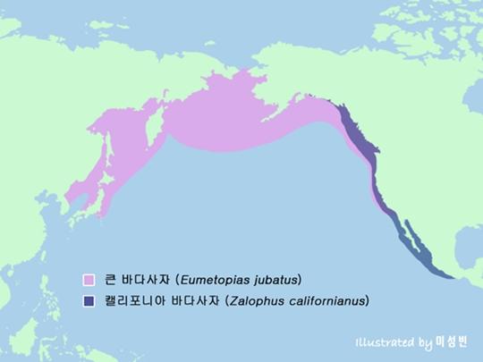 큰 바다사자와 캘리포니아 바다사자의 서식지