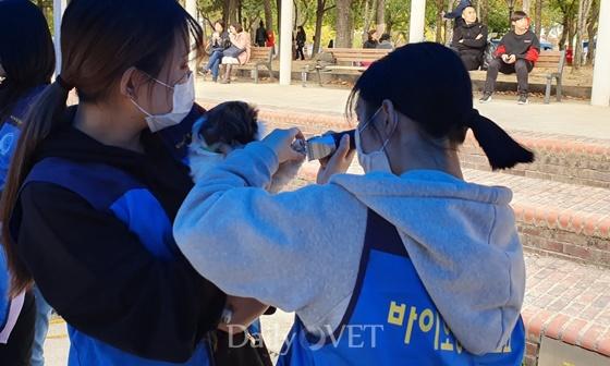 장안대 바이오동물보호과 부스에서 진행된 무료 미용