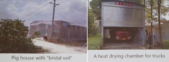 방충망을 두른 돈사(왼쪽)와 농장출입차량 고열건조시설(오른쪽) (아베리 박사 발표자료)