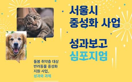 201911kara_seoul1