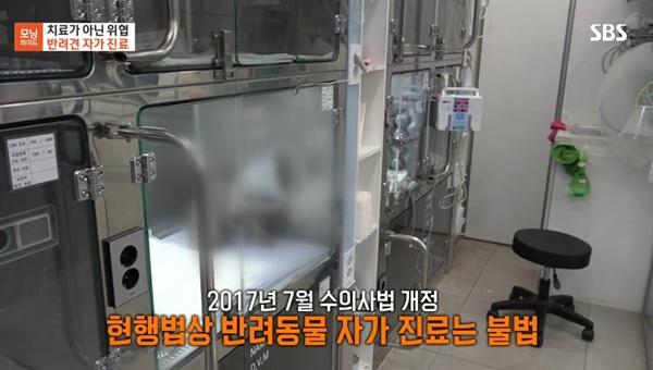 (사진 : 24일 SBS 모닝와이드3부 방영분 캡쳐)