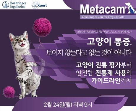 20200210metacam_webinar