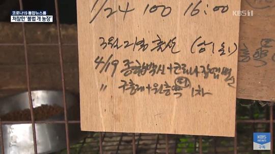 KBS 뉴스 보도 캡쳐
